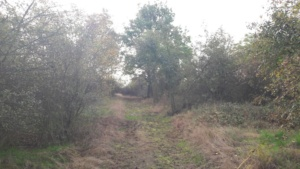 hradiste-hrbitov
